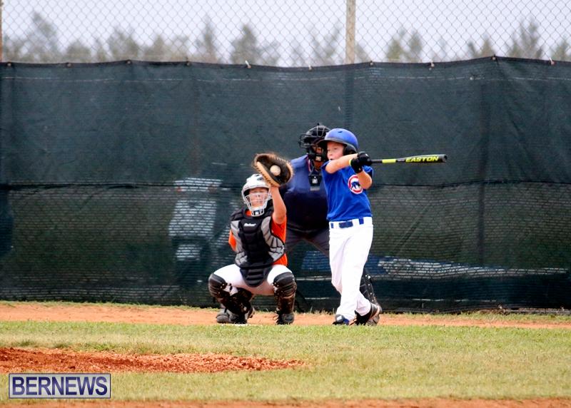 bermuda-YAO-Baseball-april-2015-2