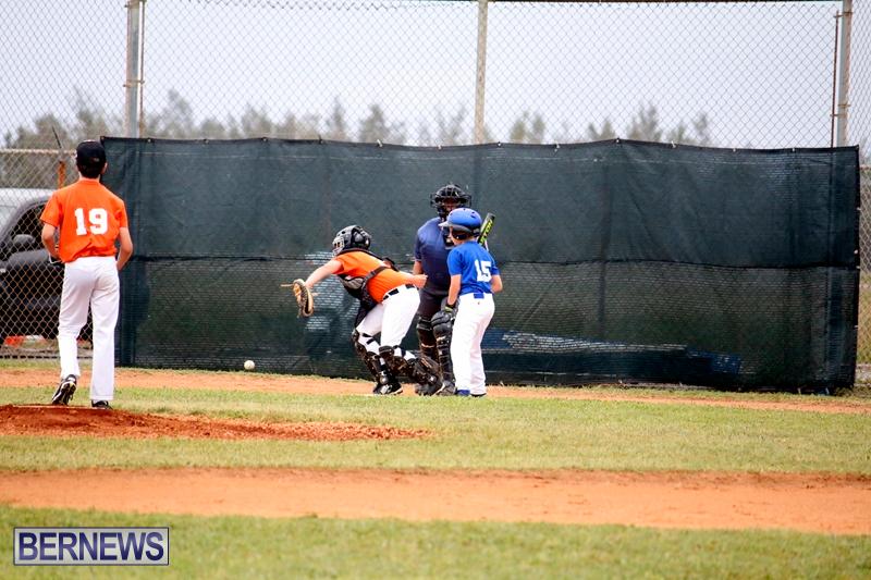 bermuda-YAO-Baseball-april-2015-3