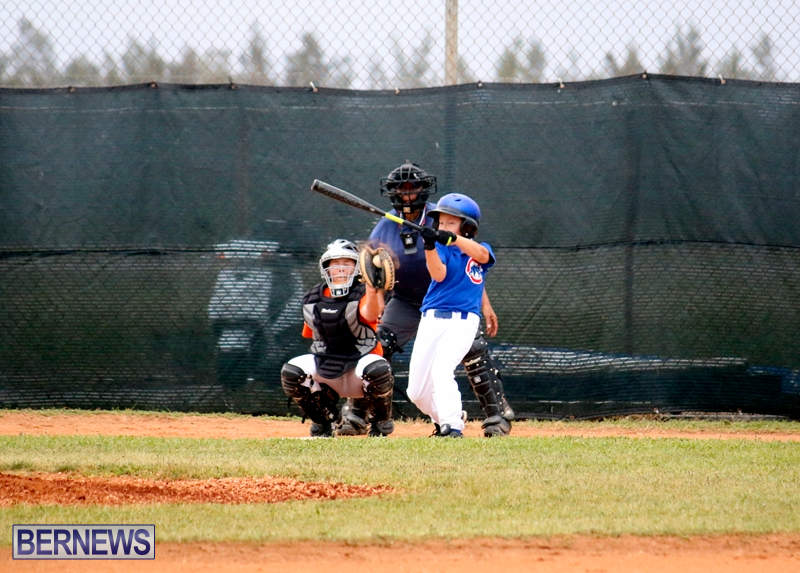 bermuda-YAO-Baseball-april-2015-4
