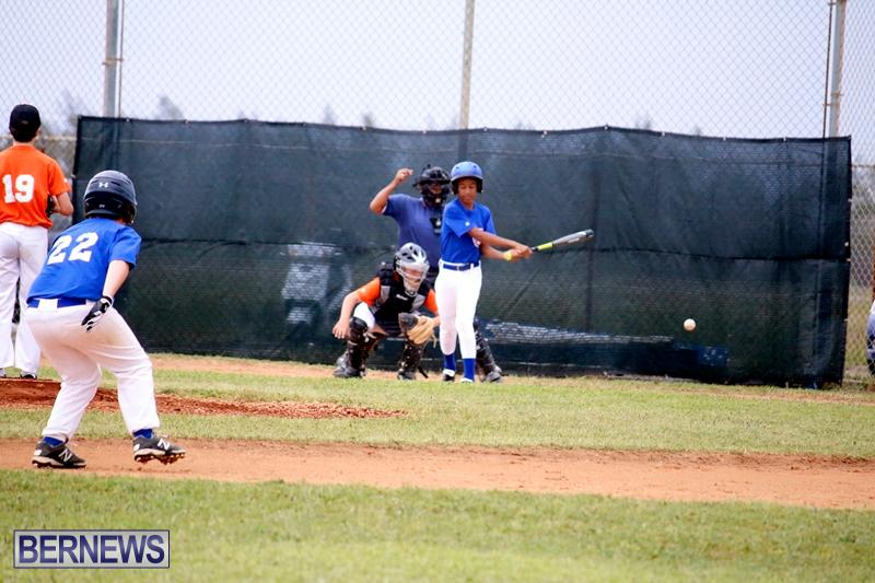 bermuda-YAO-Baseball-april-2015-7