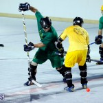 bermuda ball hockey april 2015 (1)