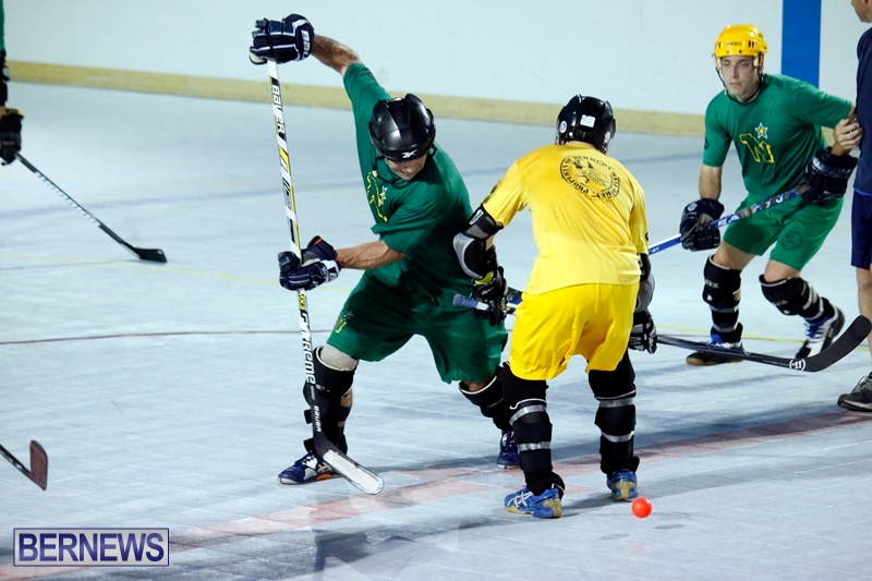 bermuda-ball-hockey-april-2015-1