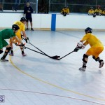 bermuda ball hockey april 2015 (10)