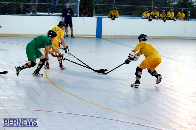 bermuda-ball-hockey-april-2015-10