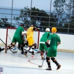 bermuda ball hockey april 2015 (11)