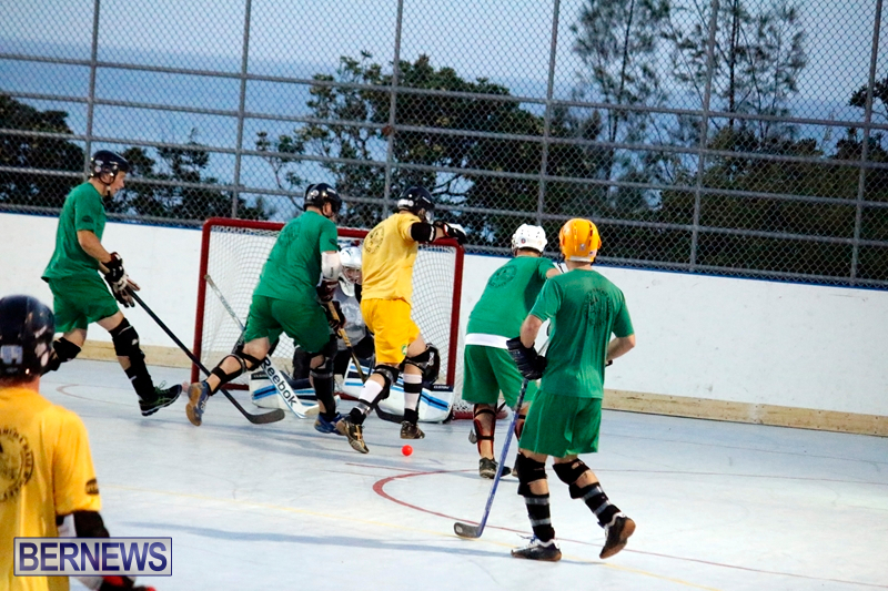 bermuda-ball-hockey-april-2015-11