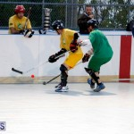 bermuda ball hockey april 2015 (12)