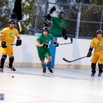 bermuda ball hockey april 2015 (13)