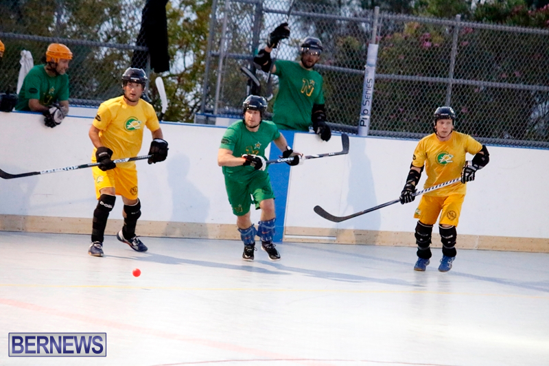 bermuda-ball-hockey-april-2015-13