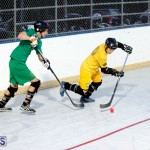 bermuda ball hockey april 2015 (14)