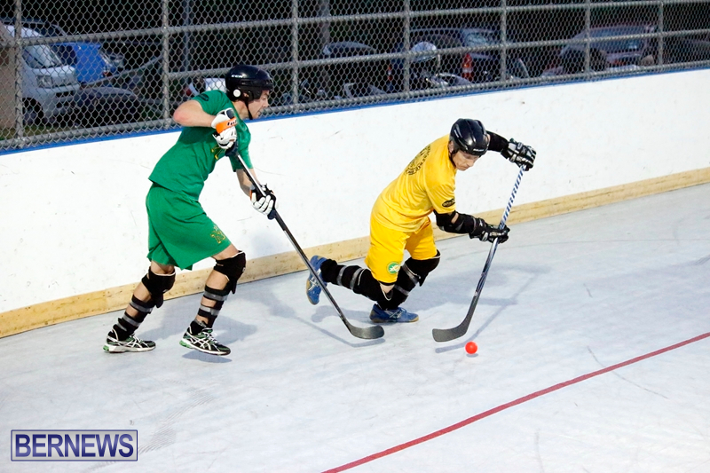bermuda-ball-hockey-april-2015-14