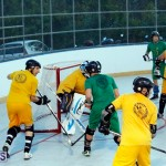 bermuda ball hockey april 2015 (15)