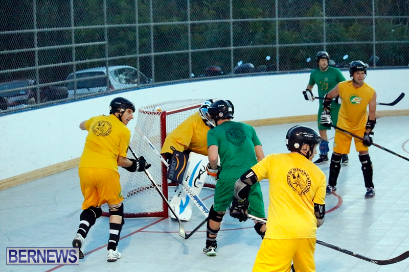 bermuda-ball-hockey-april-2015-15
