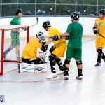bermuda ball hockey april 2015 (16)