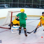 bermuda ball hockey april 2015 (17)