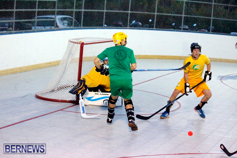 bermuda-ball-hockey-april-2015-17