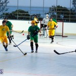 bermuda ball hockey april 2015 (18)