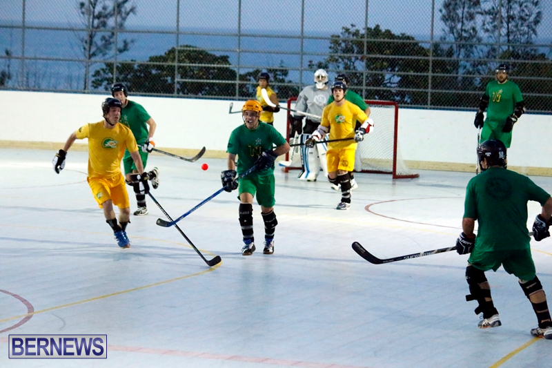 bermuda-ball-hockey-april-2015-18