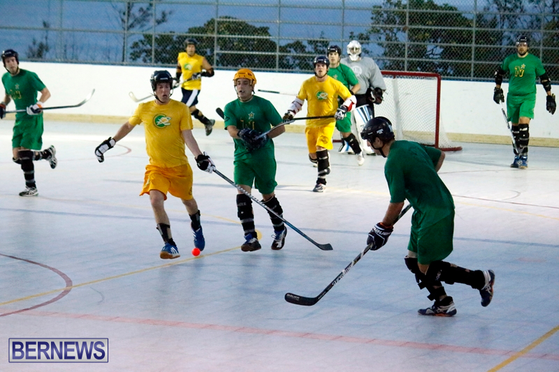 bermuda-ball-hockey-april-2015-19