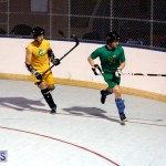 bermuda ball hockey april 2015 (2)