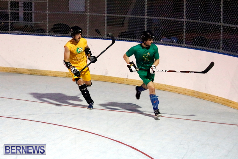 bermuda-ball-hockey-april-2015-2
