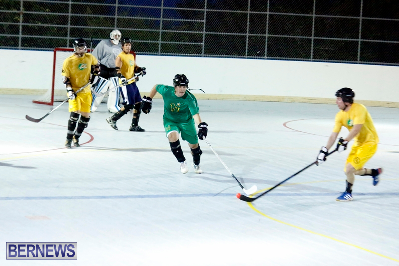 bermuda-ball-hockey-april-2015-4