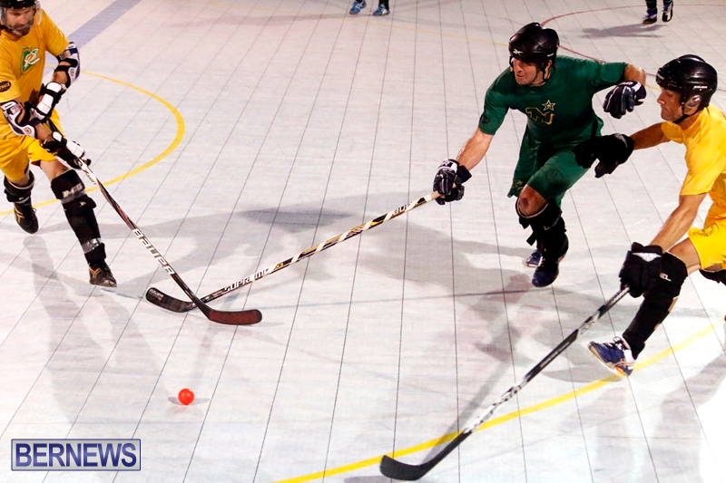 bermuda-ball-hockey-april-2015-5