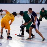 bermuda ball hockey april 2015 (6)