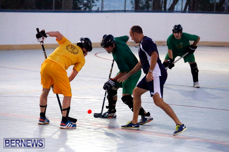 bermuda-ball-hockey-april-2015-6