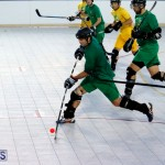 bermuda ball hockey april 2015 (7)
