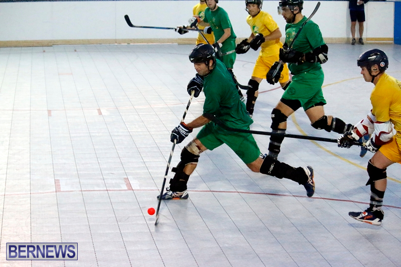 bermuda-ball-hockey-april-2015-7