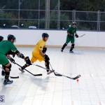 bermuda ball hockey april 2015 (8)