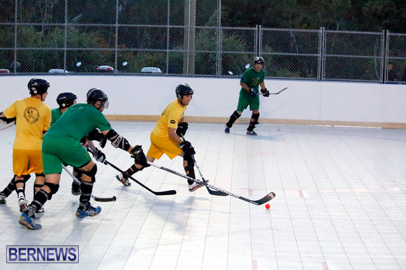 bermuda-ball-hockey-april-2015-8
