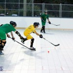 bermuda ball hockey april 2015 (9)
