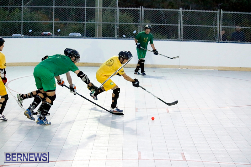 bermuda-ball-hockey-april-2015-9