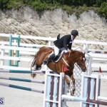 equestrian 2015 April 8 (1)