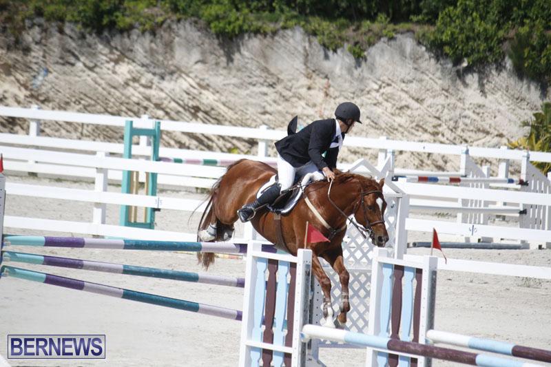 equestrian-2015-April-8-1