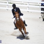 equestrian 2015 April 8 (10)