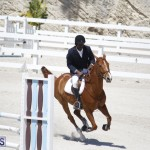 equestrian 2015 April 8 (11)