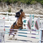 equestrian 2015 April 8 (12)