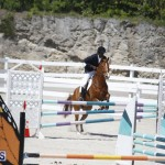 equestrian 2015 April 8 (13)
