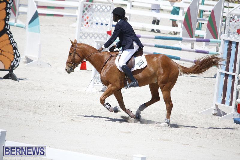 equestrian-2015-April-8-14