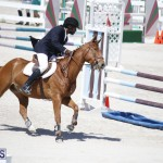 equestrian 2015 April 8 (16)