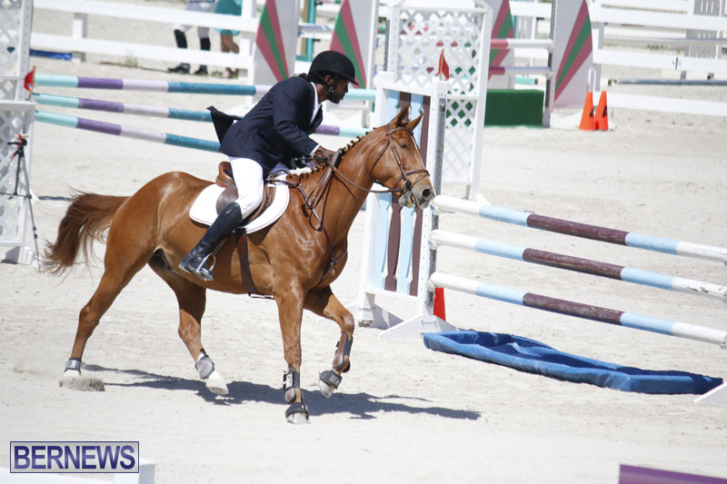 equestrian-2015-April-8-16