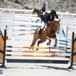 equestrian 2015 April 8 (17)