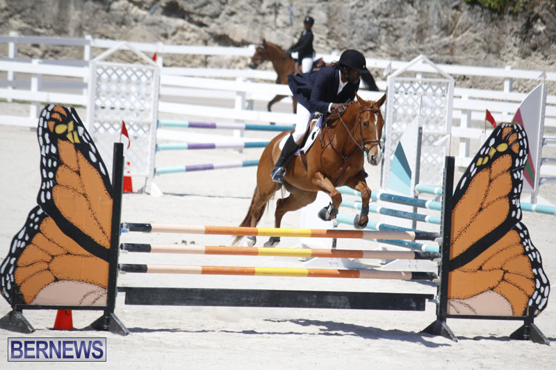 equestrian-2015-April-8-17
