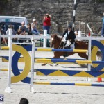 equestrian 2015 April 8 (5)