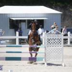 equestrian 2015 April 8 (9)