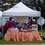 festival april 19 2015 (68)