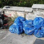 21 Collected debris awaits removal
